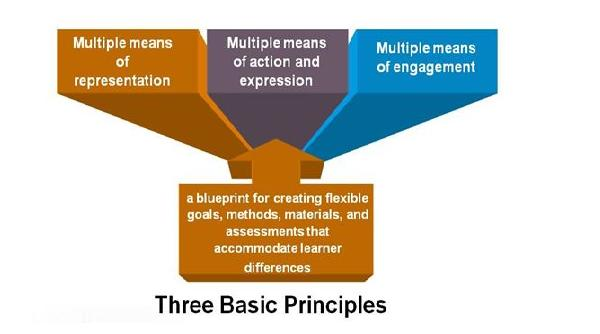 Understanding The Basics Of Universal Design For Learning W M School Of Education